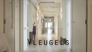 Background_Vleugels